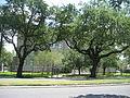 Magnolia Projects Reconstruction June 2009 Flint Goodridge.JPG