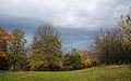 Maple Grove (15188385943).jpg