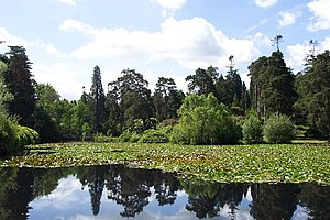 Bedgebury National Pinetum - Marshall's Lake.