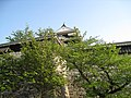 Marunouchi, Matsuyama, Ehime Prefecture 790-0008, Japan - panoramio (9).jpg