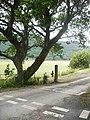 Mawddach Trail - geograph.org.uk - 1396132.jpg