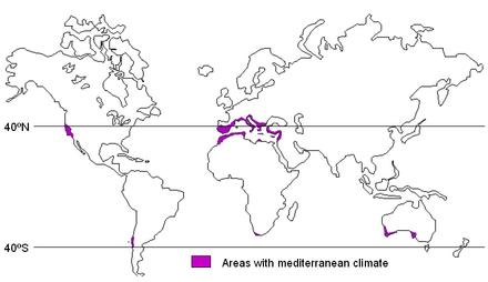 Ecosistemi mediterranei