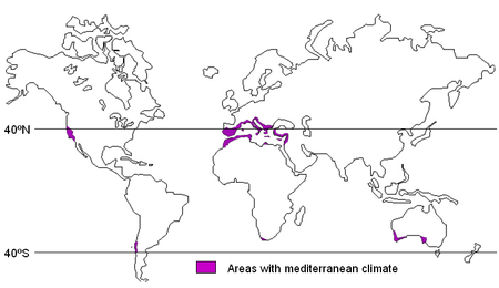Mediterranean climate - Wikipedia, the free encyclopedia