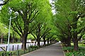 Meiji Shrine Outer Garden-1.jpg