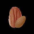 Michigan Nut Company Logo.png