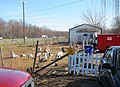 Micro-Farm with Tom turkey, hen turkeys, goats, potbelly pig and assorted stuff - panoramio.jpg