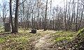 Mikolow, Poland - panoramio (176).jpg