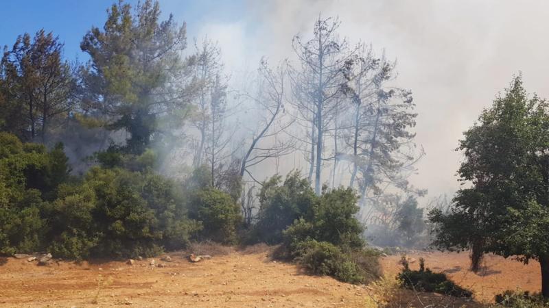 File:Milas yangın 5.webp