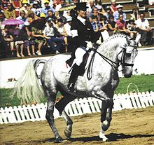 A gray horse performing in a sand ring, ridden by a woman in a dark top hat, coat and boots and white pants. In the background a white fence, small grassy area and a seated crowd are visible.