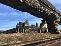 Monkey at Angkor Wat.jpg