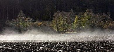 Morning mist lifting from plowed field 3.jpg