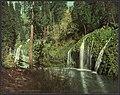Mossbrae Falls, California-LCCN2008678173.jpg