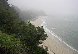 Beach Within Fitzgerald Marine Reserve Looking South