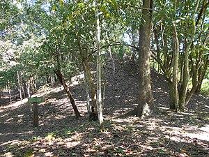 Motul de San José - Looted pyramid in Group A