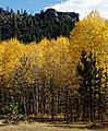 Mount Margaret Trail 10-3 (21820665190).jpg