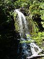 Mount Rainier National Park (31991651094).jpg