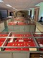 Musée de Préhistoire de l'Université de Liège, local et vitrines, vue n°4.jpg