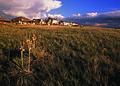 NRCSCO02001 - Colorado (1577)(NRCS Photo Gallery).jpg