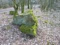 Naturdenkmal Stein am Stein P1000655.JPG