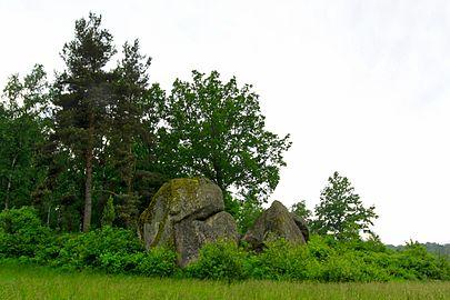Naturpark Blockheide 1.jpg