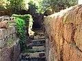 Necropoli etrusca di Banditaccia 3.jpg