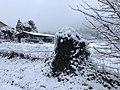 Neige à Saint-Maurice-de-Beynost (Ain, France) - décembre 2017 - 14.JPG