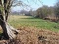 North of Gason Wood - geograph.org.uk - 693179.jpg