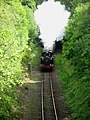 Nuttall Railway Cutting - geograph.org.uk - 437064.jpg