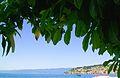 Ohrid Lake , 22.JPG