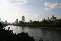 Okawa River.jpg