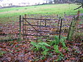 Old Monkcastle to Monkcastle House gate.JPG