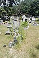 Old catholic cemetery in Pionki, 2019.07.25 (04).jpg