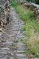 Old path (9016508101).jpg