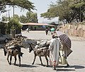 On The Road to Gondar, Ethiopia (2401865686).jpg