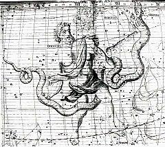 Shaina de Cobra  240px-Ophiuchus