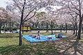 Osaka Castle Park, Osaka Prefecture; April 2014 (07).jpg