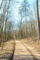 Přírodní památka Hustířanský les 02.jpg
