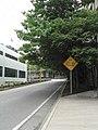 PAX 2008 - Street (2812240029).jpg
