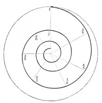 PSM V11 D721 Logarithmic spiral of musical tone.jpg