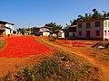 Pa-Oh village east of Kalaw (Myanmar 2013) (11772592855).jpg
