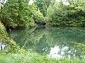 Pagny-sur-Meuse Etang des Moines.jpg