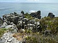 Pancake Rocks, West Coast Region, New Zealand (21).JPG