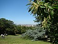 Panorama from the hill in Greenwich Park ^2 - geograph.org.uk - 2479201.jpg