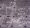 Paolo Monti - Serie fotografica (Paris, 1960) - BEIC 6342523.jpg