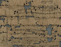 Papyri from Oxyrhynchus A.D. 113.png