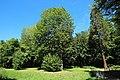Parc de la Noisette à Antony et Verrières-le-Buisson le 22 août 2017 - 48.jpg