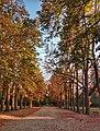 Parco della chiusa in autunno.jpg