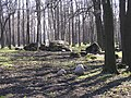 Park Koplis - panoramio - Aulo Aasmaa (3).jpg