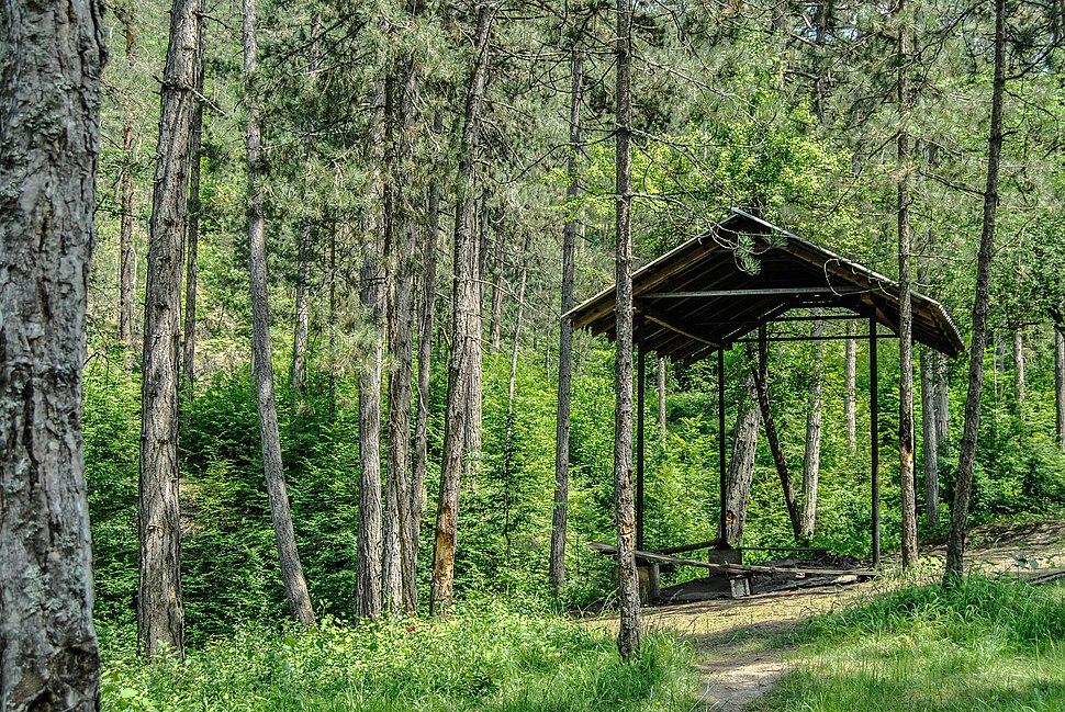 Park prirode Šumski kompleks oko višegradske banje 39