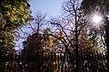 Parque del Retiro, Madrid - 002.jpg